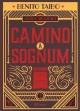 Go to record Camino a Sognum