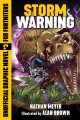 Go to record Storm warning : official graphic novel for Fortniters