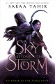 Go to record A sky beyond the storm