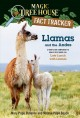 Go to record Llamas and the Andes : a nonfiction companion to Magic Tre...